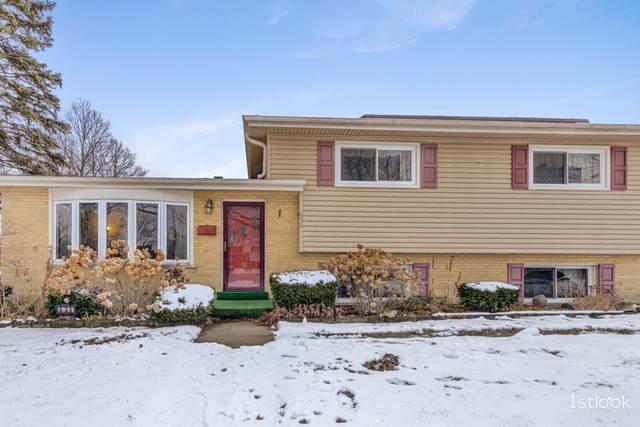 430 S Ardmore Avenue, Addison, IL 60101 (MLS #10968184) :: Schoon Family Group