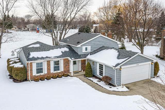 1104 Tracy Lane, Libertyville, IL 60048 (MLS #10968831) :: The Dena Furlow Team - Keller Williams Realty