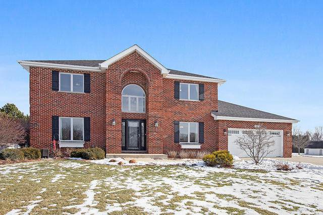 18627 S Marley Hills Road, Mokena, IL 60448 (MLS #10970329) :: The Wexler Group at Keller Williams Preferred Realty