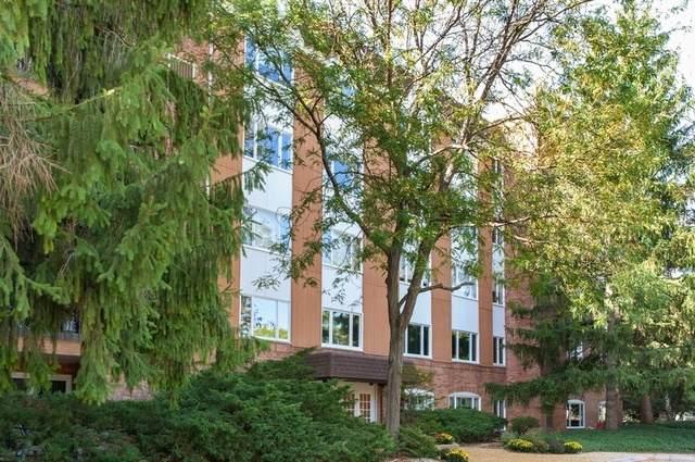 205 Rivershire Lane #211, Lincolnshire, IL 60069 (MLS #10970606) :: Helen Oliveri Real Estate