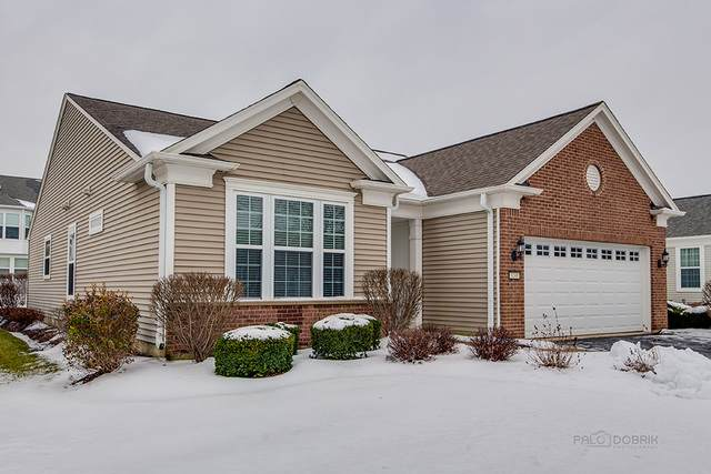 3241 Ravinia Circle, Mundelein, IL 60060 (MLS #10972260) :: Jacqui Miller Homes