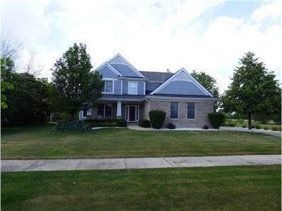 21366 Breton Road, Frankfort, IL 60423 (MLS #10972391) :: Jacqui Miller Homes