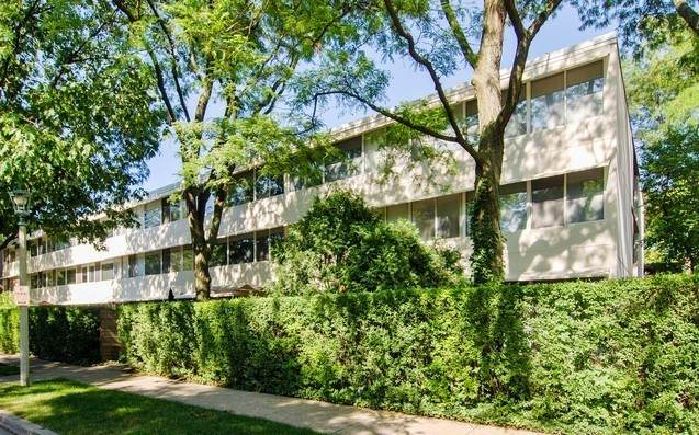 300 N Maple Avenue #15, Oak Park, IL 60302 (MLS #10972441) :: The Spaniak Team
