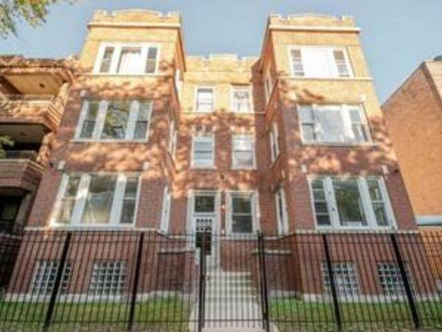 6809 S Cornell Street 1S, Chicago, IL 60649 (MLS #10972498) :: Jacqui Miller Homes