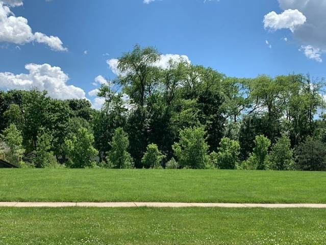 75 Landon Circle, Wheaton, IL 60189 (MLS #10972803) :: The Wexler Group at Keller Williams Preferred Realty