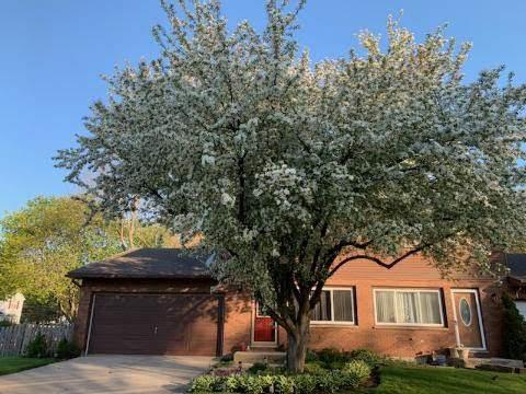 966 Marbilynn Drive, Elgin, IL 60120 (MLS #10973018) :: Janet Jurich
