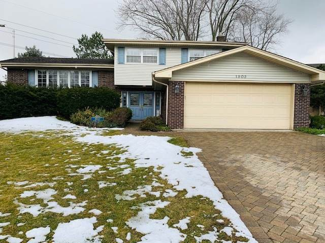 1902 N Spruce Terrace, Arlington Heights, IL 60004 (MLS #10973430) :: Jacqui Miller Homes