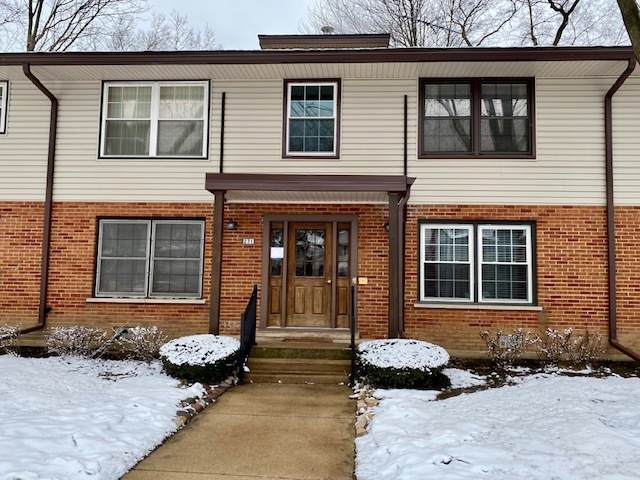 231 Washington Square B, Elk Grove Village, IL 60007 (MLS #10973494) :: Helen Oliveri Real Estate