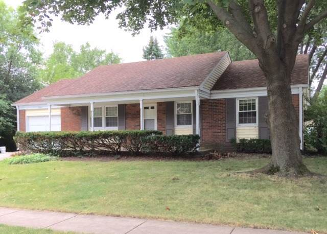 444 Regent Drive, Buffalo Grove, IL 60089 (MLS #10974202) :: Helen Oliveri Real Estate