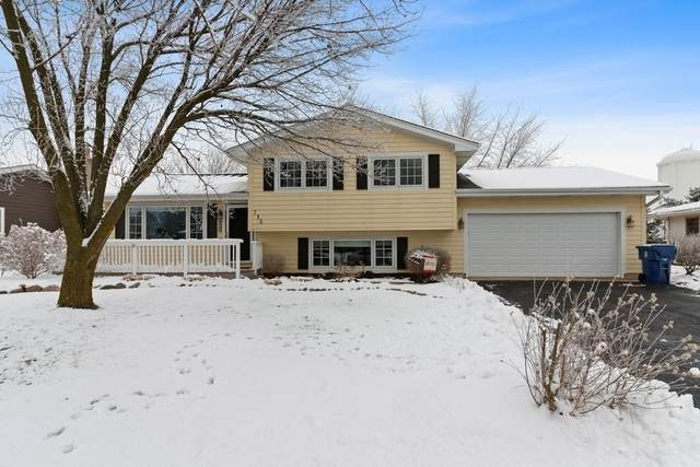 715 Amber Road, New Lenox, IL 60451 (MLS #10974452) :: Jacqui Miller Homes