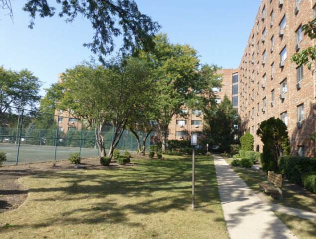 8439 W Catherine Avenue #717, Chicago, IL 60656 (MLS #10974809) :: Helen Oliveri Real Estate