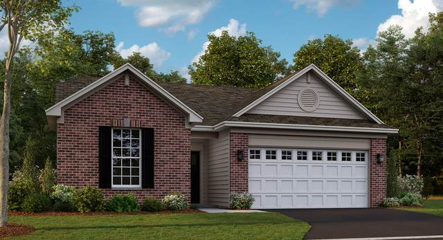 11973 Hart Court, Huntley, IL 60142 (MLS #10975885) :: The Spaniak Team