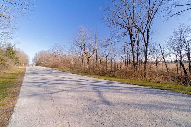 3663 W Pinewood Drive, Monee, IL 60449 (MLS #10976575) :: Schoon Family Group