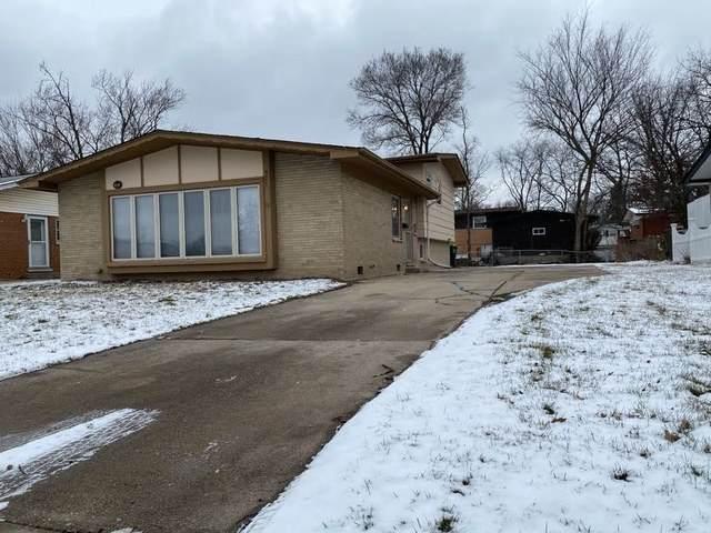921 W 187th Street, Glenwood, IL 60425 (MLS #10976978) :: Schoon Family Group