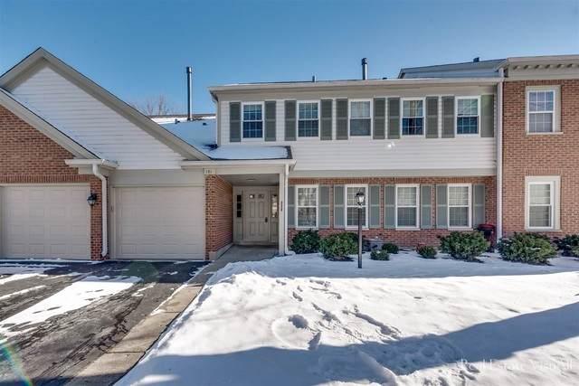 151 Brookston Drive B2, Schaumburg, IL 60193 (MLS #10977352) :: John Lyons Real Estate