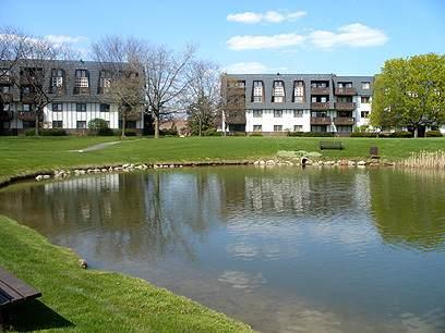 13200 W Heiden Circle #2209, Lake Bluff, IL 60044 (MLS #10977551) :: Littlefield Group