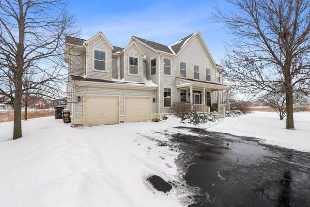 1525 Lupine Court, Grayslake, IL 60030 (MLS #10977725) :: Jacqui Miller Homes