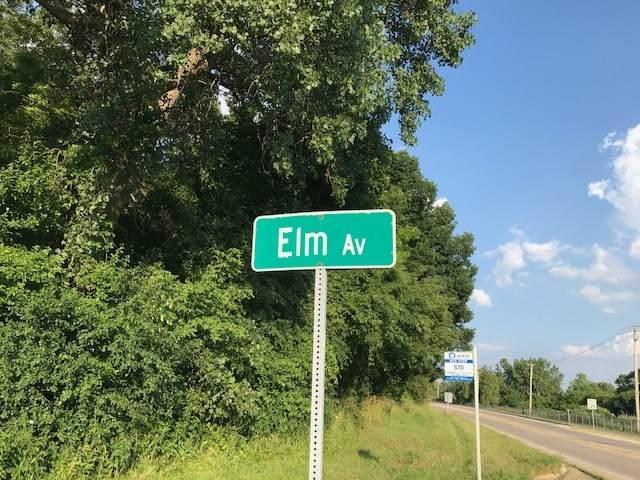 86 Elm Avenue, Fox Lake, IL 60020 (MLS #10978785) :: Touchstone Group