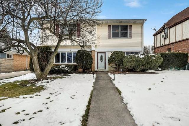 962 W Grant Drive, Des Plaines, IL 60016 (MLS #10979404) :: Ryan Dallas Real Estate