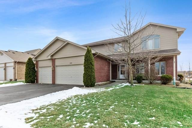 8759 Koehler Drive, Tinley Park, IL 60487 (MLS #10979760) :: Touchstone Group