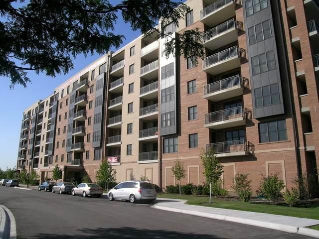 300 Anthony Avenue 501A, Mundelein, IL 60060 (MLS #10981528) :: Helen Oliveri Real Estate