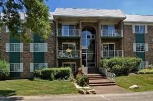 1519 N Windsor Drive #209, Arlington Heights, IL 60004 (MLS #10982526) :: Helen Oliveri Real Estate