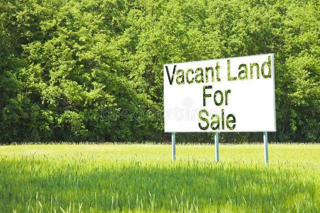 12S355 Lemont Road, Lemont, IL 60439 (MLS #10984825) :: RE/MAX IMPACT