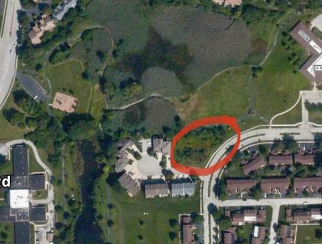 16320 Brementowne Drive, Tinley Park, IL 60477 (MLS #10984851) :: Touchstone Group