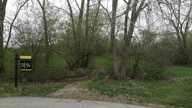 Lot 55 Tyler Creek Court, Gilberts, IL 60136 (MLS #10985707) :: The Dena Furlow Team - Keller Williams Realty