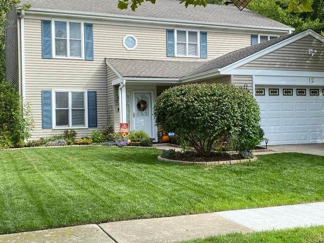 12 Lindon Lane, Vernon Hills, IL 60061 (MLS #10994664) :: The Dena Furlow Team - Keller Williams Realty
