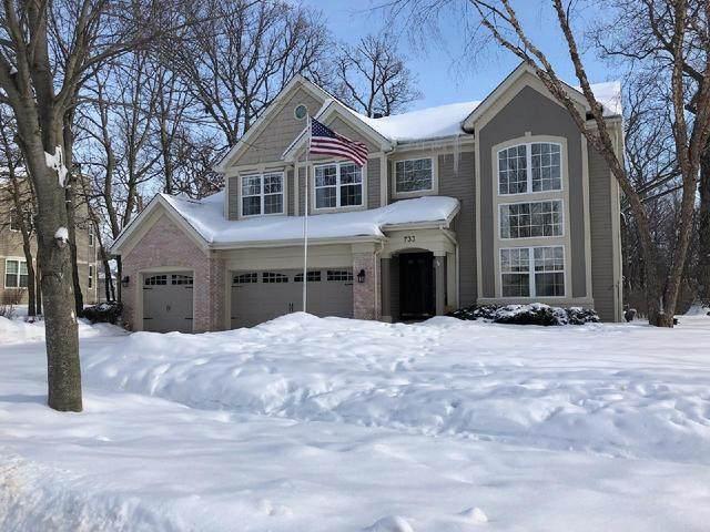 733 Wyndmuir Drive, Crystal Lake, IL 60012 (MLS #10994669) :: John Lyons Real Estate