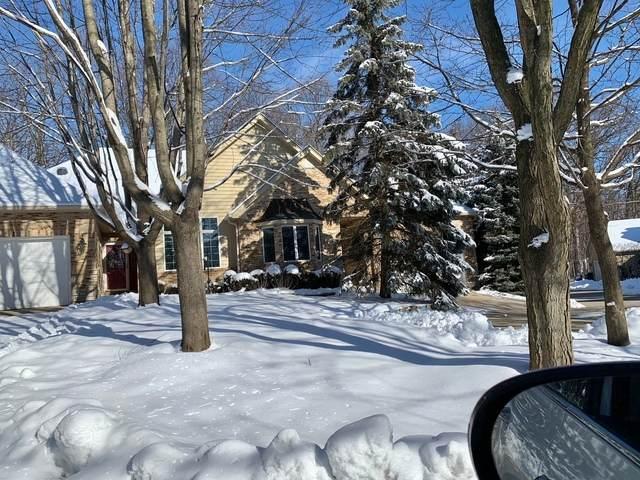 769 Manor Hill Place, Sugar Grove, IL 60554 (MLS #10995604) :: The Dena Furlow Team - Keller Williams Realty