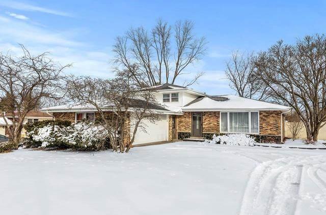 14255 S Parker Road, Homer Glen, IL 60491 (MLS #10996630) :: The Dena Furlow Team - Keller Williams Realty