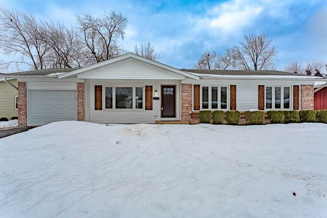 81 Essex Road, Elk Grove Village, IL 60007 (MLS #10998585) :: Jacqui Miller Homes