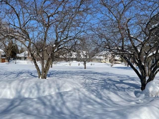 4619 Forest Edge Lane, Long Grove, IL 60047 (MLS #10998591) :: Helen Oliveri Real Estate