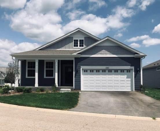 1321 Redtail Lane, Woodstock, IL 60098 (MLS #10999464) :: The Dena Furlow Team - Keller Williams Realty