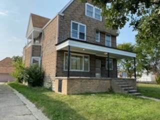 9206 S Phillips Avenue, Chicago, IL 60617 (MLS #11000302) :: The Dena Furlow Team - Keller Williams Realty
