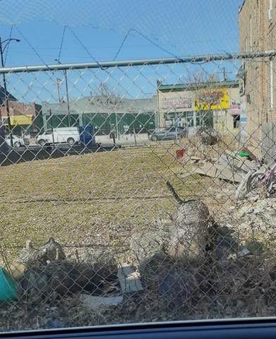 5905-5907 W Fullerton Avenue, Chicago, IL 60639 (MLS #11002431) :: Jacqui Miller Homes