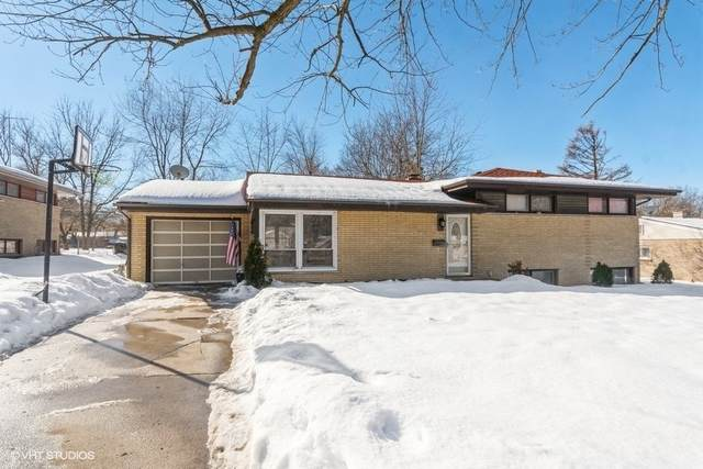 110 Briar Lane, North Aurora, IL 60542 (MLS #11003203) :: The Dena Furlow Team - Keller Williams Realty