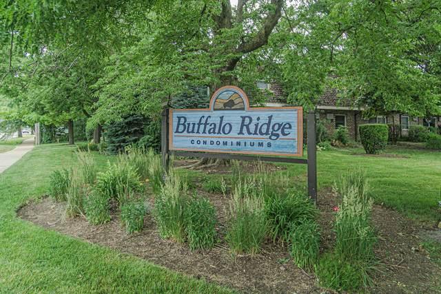 869 Trace Drive #101, Buffalo Grove, IL 60089 (MLS #11004550) :: Ani Real Estate