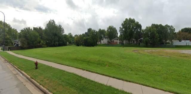 V W 191st Street, Mokena, IL 60448 (MLS #11005690) :: The Dena Furlow Team - Keller Williams Realty