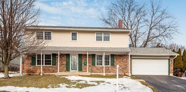 6109 Allan Drive, Woodridge, IL 60517 (MLS #11005894) :: Ani Real Estate