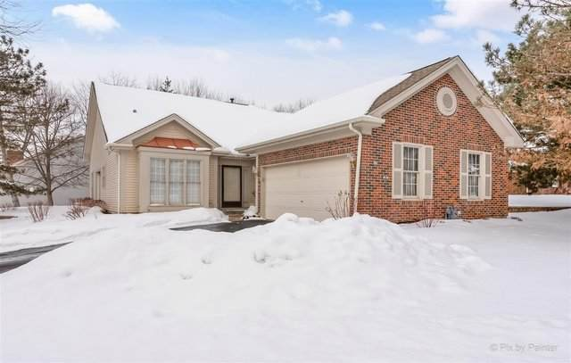 250 Devonshire Court, Schaumburg, IL 60173 (MLS #11006489) :: RE/MAX IMPACT