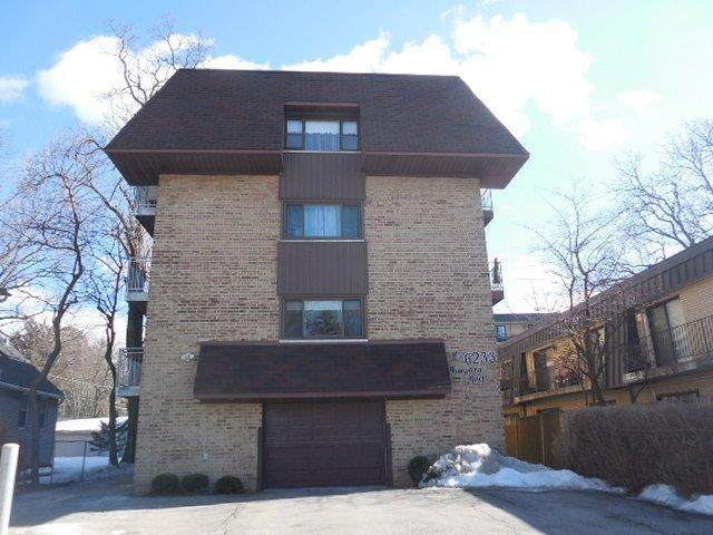 6233 N Niagara Avenue 3D, Chicago, IL 60631 (MLS #11008745) :: The Dena Furlow Team - Keller Williams Realty