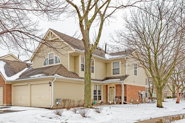 2159 Rob Roy Court, Hanover Park, IL 60133 (MLS #11008848) :: RE/MAX IMPACT