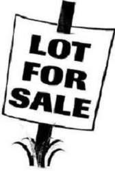 0006 Sunset Boulevard, Oglesby, IL 61348 (MLS #11009402) :: Ryan Dallas Real Estate