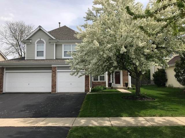424 Gatewood Lane, Grayslake, IL 60030 (MLS #11009772) :: Helen Oliveri Real Estate