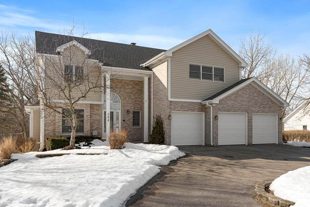 394 S Middleton Avenue, Palatine, IL 60067 (MLS #11009972) :: Carolyn and Hillary Homes