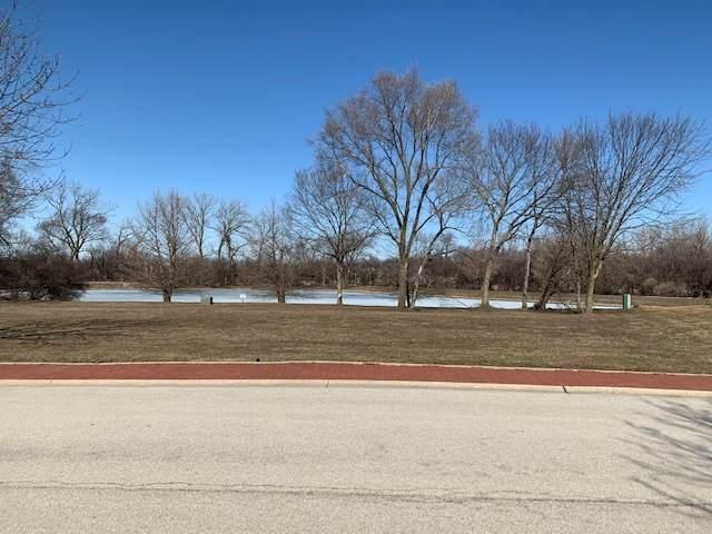 210-212 Stephen Lane, Joliet, IL 60431 (MLS #11010604) :: Littlefield Group