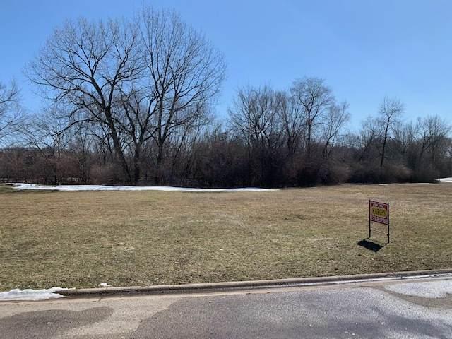 205 Stephen Lane, Joliet, IL 60431 (MLS #11010614) :: Littlefield Group